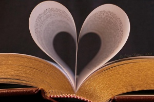 bookish heart pages folded